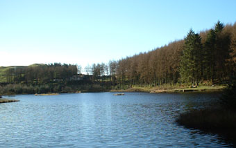 Lake view at Bwylch Nant-yr-Arian Forest Center